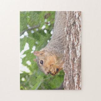 Squirrel Jigsaw Puzzle
