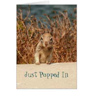 Squirrel Just Popped In Card