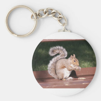 squirrel key ring