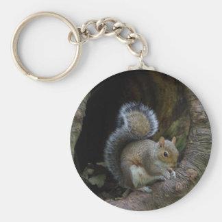 Squirrel Keyring Basic Round Button Key Ring