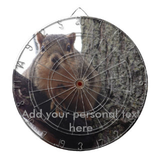 Squirrel looking at your dart board