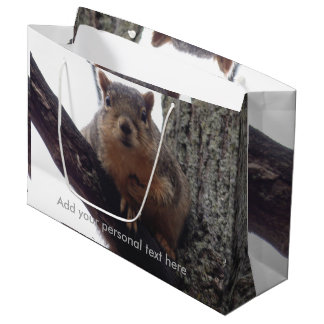 Squirrel looking at your gift bag