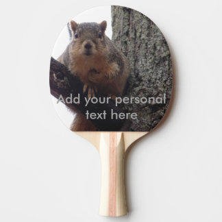Squirrel looking at your ping pong paddle