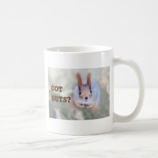 Squirrel looks at you from the bottom up coffee mug