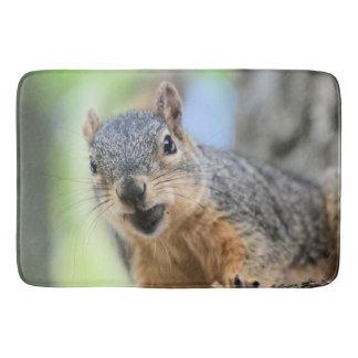 Squirrel magnet bath mats