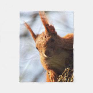 Squirrel Mammal Rodent Fleece Blanket