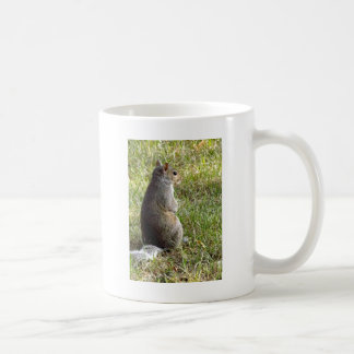 Squirrel Meditations Coffee Mug