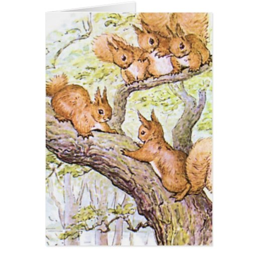 Squirrel Meeting Card
