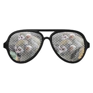 Squirrel Monkey Affair Aviator Sunglasses