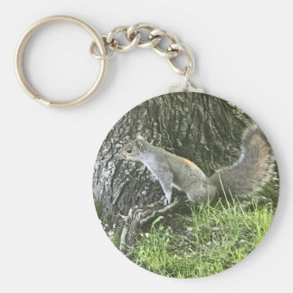 Squirrel next to a tree with green grass key ring