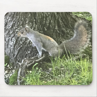Squirrel next to a tree with green grass mouse pad