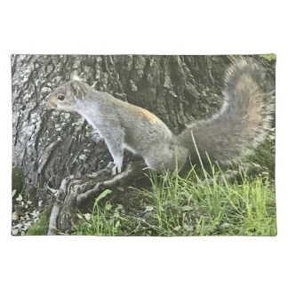 Squirrel next to a tree with green grass placemat