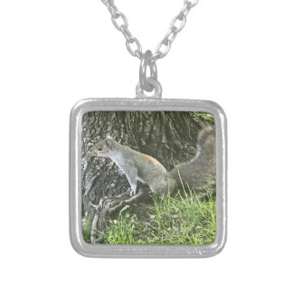 Squirrel next to a tree with green grass silver plated necklace