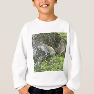 Squirrel next to a tree with green grass sweatshirt