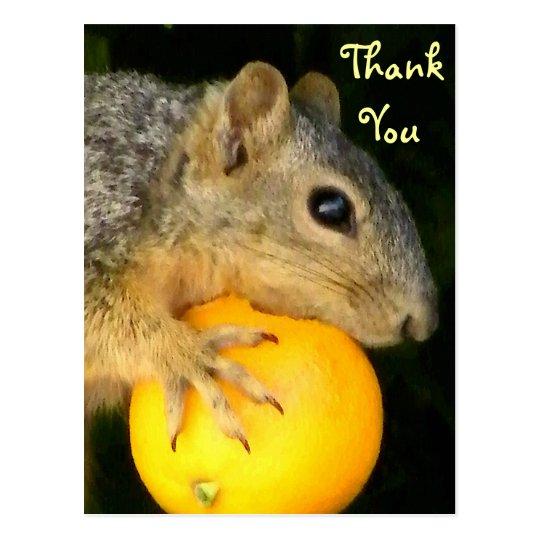 Squirrel of Love_ Postcard