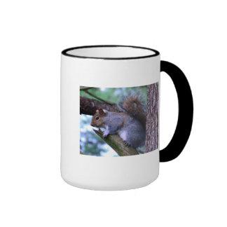 Squirrel on a Branch Ringer Mug