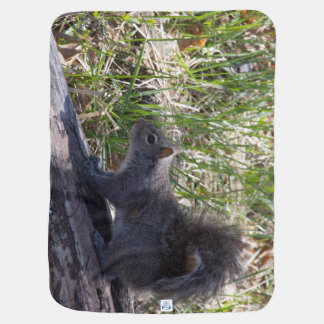 Squirrel on a Log Baby Blanket