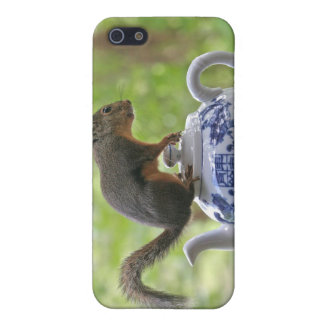 Squirrel on a Teapot iPhone 5 Covers
