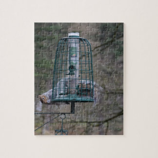 Squirrel on bird feeder jigsaw puzzle