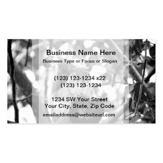 squirrel on log cute bw animal business cards