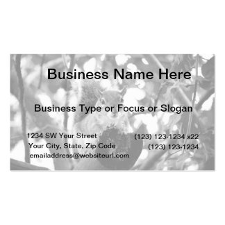 squirrel on log cute bw animal business card templates