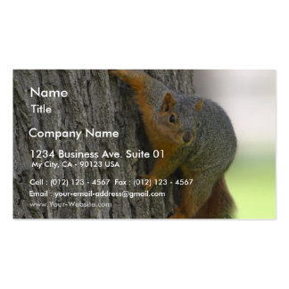Squirrel On Tree Business Card Templates