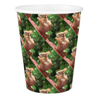 Squirrel Paper Cup