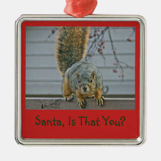 SQUIRREL PEERING INTO HOUSE/SANTA IS THAT YOU? METAL ORNAMENT