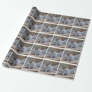 Squirrel photo wrapping paper