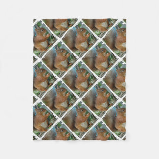 SQUIRREL Photography Jean Louis Glineur Fleece Blanket