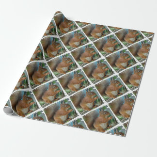 SQUIRREL Photography Jean Louis Glineur Wrapping Paper