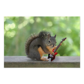 Squirrel Playing Electric Guitar Photograph