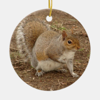 Squirrel posing for a picture Double-Sided ceramic round christmas ornament