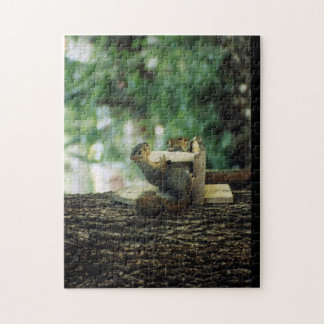 Squirrel Puzzle: Twin Squirrels Jigsaw Puzzle