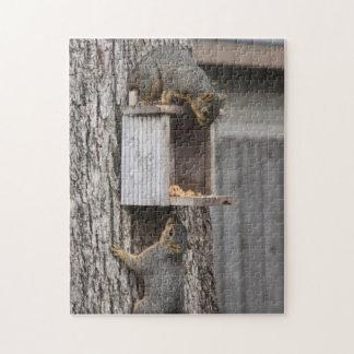 Squirrel puzzle: Two Squirrels Puzzle
