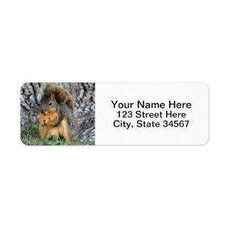 Squirrel Return Address Labels