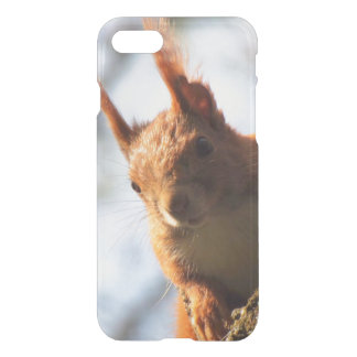 Squirrel Rodent Mammal iPhone 7 Case