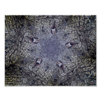 Squirrel Round Table Poster