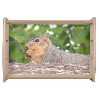 Squirrel Serving Tray