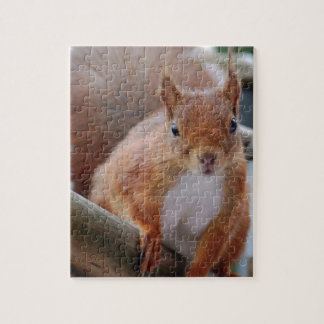 Squirrel squirrel Écureuil - Jean Louis Glineu Puzzle