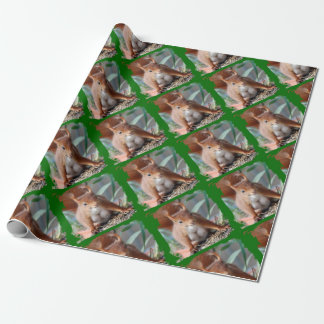SQUIRREL - SQUIRREL - photo Jean Louis Glineur Wrapping Paper