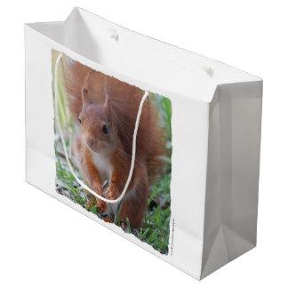 SQUIRREL SQUIRRELS ÉCUREUIL - photo: Glineur Large Gift Bag