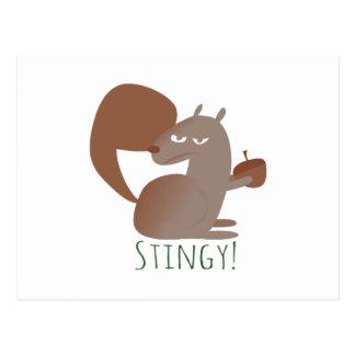 Squirrel Stingy Postcard