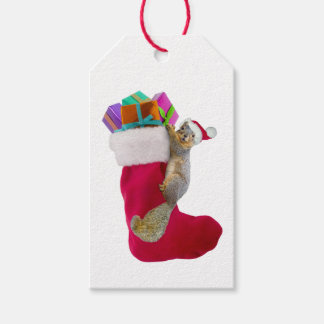 Squirrel Stocking Gift Tags