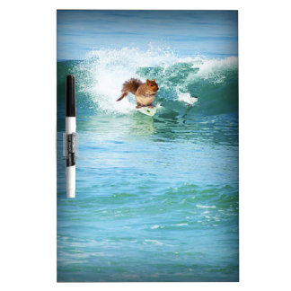 Squirrel Surfing The Ocean Dry Erase White Board
