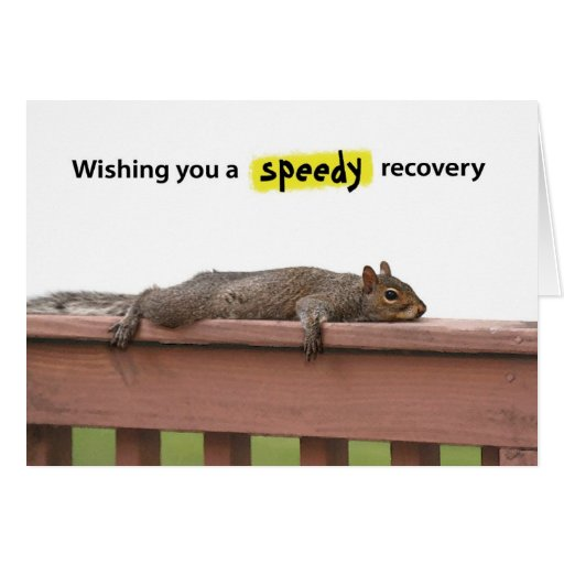 Squirrel - Wishing you a speedy recovery Cards