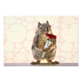 Squirrel with Bouquet of Red Roses Art Photo