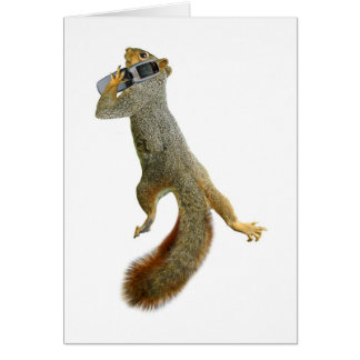 Squirrel with Cell Phone Card