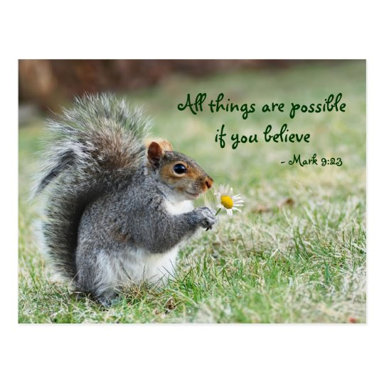 Squirrel with Daisy Mark 9:23 Verse Postcard