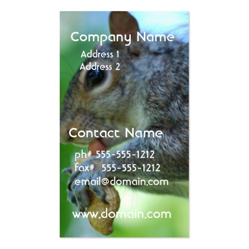 Squirrel with Nut Business Card